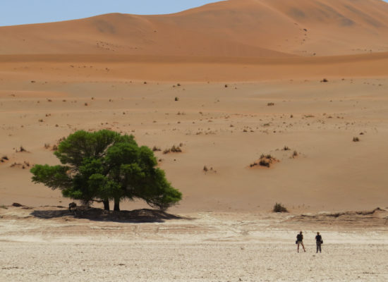 Grandioos Afrika-10