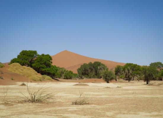 Grandioos Afrika-13