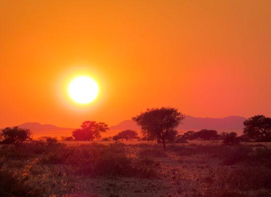 Grandioos Afrika-19