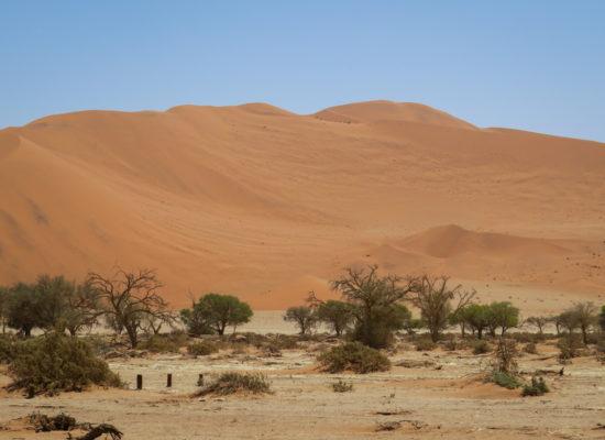 Grandioos Afrika-8