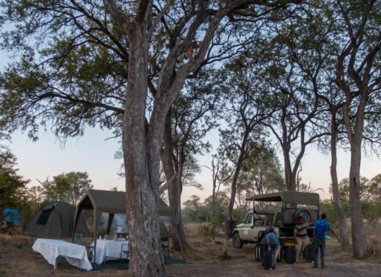 Campsite bush safari Botswana